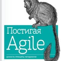 456 грн.| Постигая Agile. Ценности